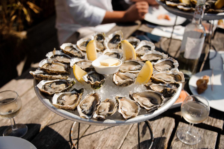 oyster tour peljesac